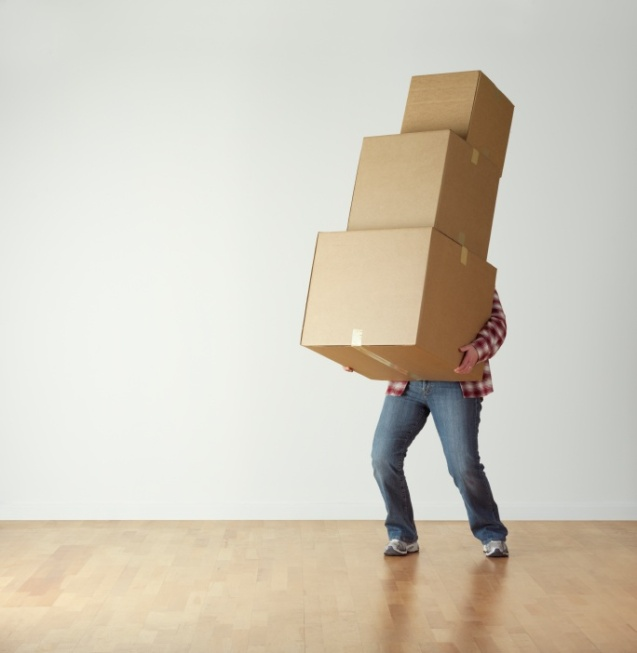 carrying-boxes